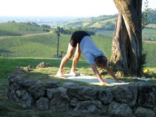 yoga 009-157-800-600-100